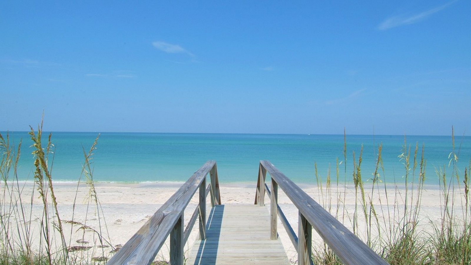 Beach Condo Rentals In Venice Florida